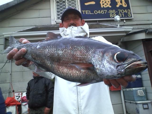 カツオ餌投げのゲリオ、根魚初挑戦で3kgムツをゲット!他にキンメ4枚とメダイも