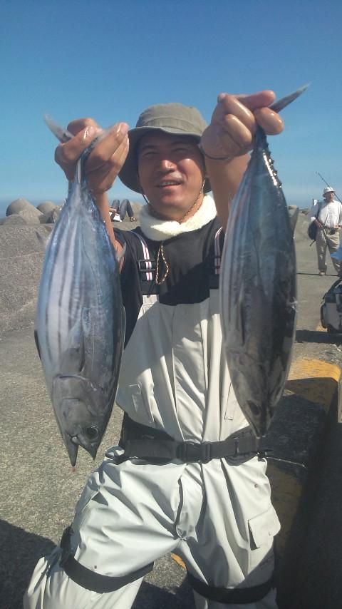 17日 初物です!!一本釣りで釣りました。美味しそうなサイズですね