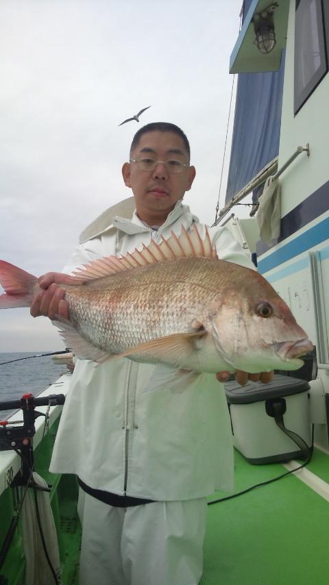 24日 瀬の海の大ダイ連日ヒット中!!本日もハリス切れ有りながらも4.0kgゲット!